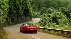 driving the road to hana (maui, hawaii) - stock footage