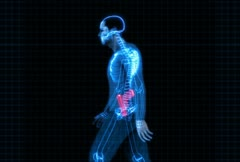 Security x-ray scanner - man with gun Stock Footage