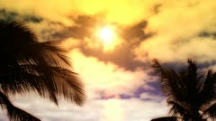 Sunset In Tropical Paradise Stock Footage