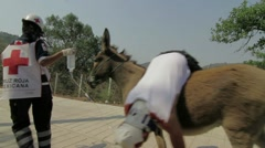 Red Cross Donkey Stock Footage