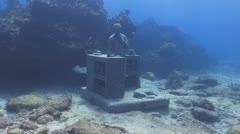 Underwater Museum IV,Cancun & Isla Mujeres,MX Stock Footage