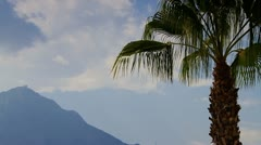 Palm and Mountains - stock footage