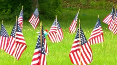 Flags by the dozen Stock Footage