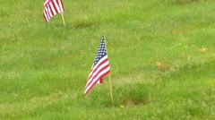 Rows of red white and blue Stock Footage