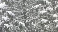 Stock Video Footage of HD: Snowing