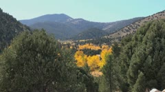 Nevada Great Basin National Park aspen in valley Stock Footage