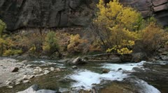 Zion Virgin river rapids C Stock Footage