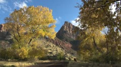 Zion the Watchman framed with trees Stock Footage