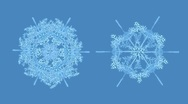 Stock Video Footage of Growing snowflakes with alpha, #2
