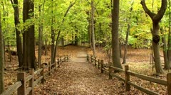 Little trail's bridge in the autumn Stock Footage