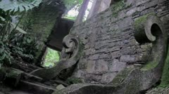 Strange Building in the Jungle of Xilitla Stock Footage