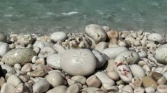 cryptic stone on the beach - stock footage