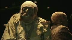 Old Mummy Stock Footage