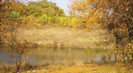 Stock Video Footage of Autumn river (vertical panorama)