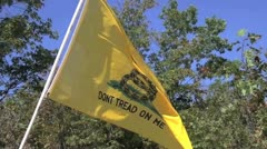 Gadsden flag 1 Stock Footage