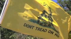 Gadsden flag 3 Stock Footage