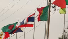 Flags from different countries Stock Footage