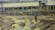 Man LOGGER Walks on Logs Lumber Mill Logging INDUSTRY Vintage Film Archival 1737 Stock Footage