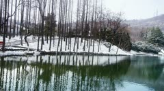 Forest reflection in water,ripple,snow. Stock Footage
