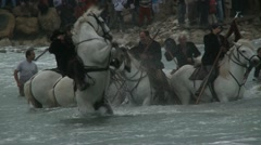 Camargue guardians at Sara Kali pilgrimage Stock Footage