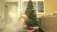 201 Christmas Tree Assembly Timelapse Stock Footage