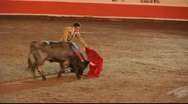 Bull fight Stock Footage