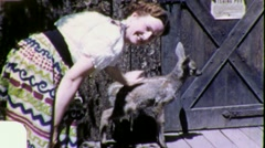 Woman at Petting Zoo with Deer Circa 1955 (Vintage Film Home Movie) 1820 - stock footage