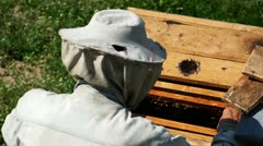 Beekeeper At Work V3 Stock Footage