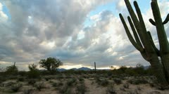 Arizona Desert Vista - stock footage