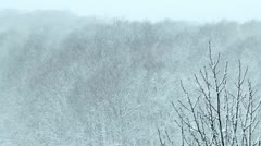 Snowstorm, snow flies from everywhere Stock Footage
