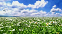 Clean Energy Stock Footage
