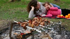 Mother and daugther lay on grass covered by plaid, plates with fruit are near Stock Footage