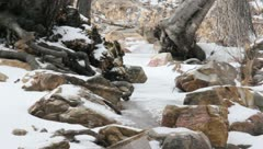 Ice and rocks Stock Footage