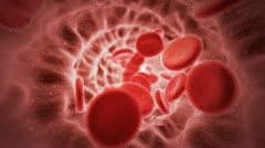 Red blood cells in artery - stock footage
