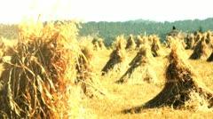 Haystacks Stock Footage