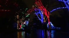 Zoo Lights arched sign, rainy folks pass. Spooky design. Stock Footage