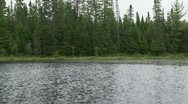Stock Video Footage of Algonquin Provincial Park pan 2