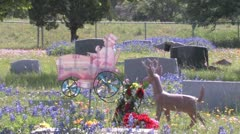 Spring at Antioch Colony Cemetery Stock Footage