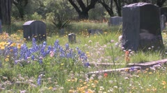 Spring time Cemetery Antioch Colony Stock Footage