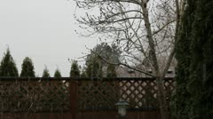 Wet Daytime Snow Stock Footage