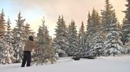 Decorating the Christmas Tree 1 Stock Footage