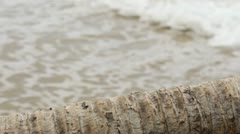 Waves and a palm tree trunk Stock Footage