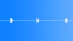 Woodpecker hammering 2 Sound Effect