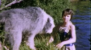PET DOG SWIMMING GIRL 1960 (Vintage Old Home Movie Film Footage) 1978 Stock Footage