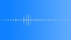 SFX - Horse walking by - 1 - EAR - sound effect
