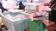 Weighing Fish Stock Footage