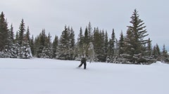 Man in Snowshoes Carries Xmas Tree Left to Right Stock Footage