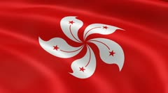 Hong Konger flag in the wind - stock footage