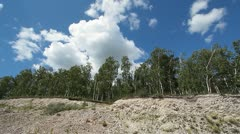 Trees in quarry 1 Stock Footage