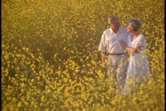 A mature couple walk in a field of yellow wildflowers. Stock Footage